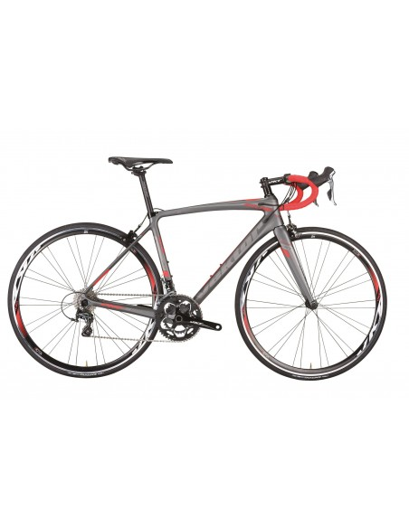Bici da corsa VEKTOR ATLAS carbonio monoscocca 2019