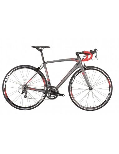 Kit telaio bici da corsa in carbonio VEKTOR Atlas 2019