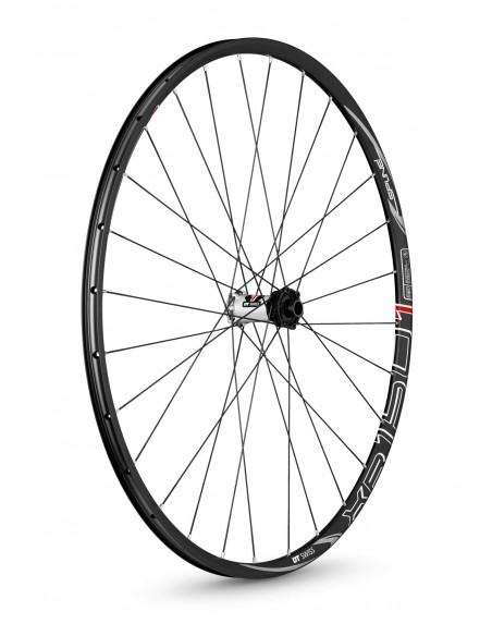 17617 DT SWISS RUOTE XR 1501 SPLINE ONE 29er ANTERIORE 15/100 MM TA